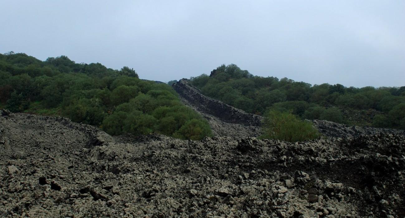 Lava Eruzione 1923 Pineta Etna